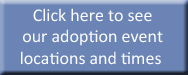 View Adoption Events